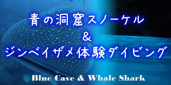 Blue Cave snorkeling & Whale Shark Try Diving in okinawa japan